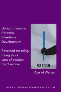 ace of wands tarot minor arcana