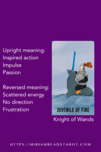 knight of wands tarot minor arcana
